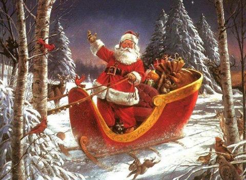 Дядо Коледа в шейната