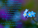Стихотворение за жена