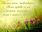 Стихотворение за пролетта
