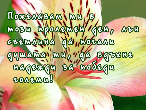 Пожелавам ти в този пролетен ден