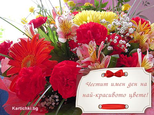 Честит имен ден на най-красивото цвете ...: kartichki.bg/kartichki/cvetnica-vrabnica/chestit-imen-den-na-naj...