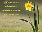 Бъди като цветята