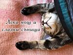 Лека нощ и сладки сънища