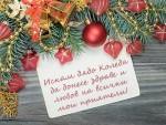 Искам дядо Коледа да донесе здраве и любов на всички мои приятели!
