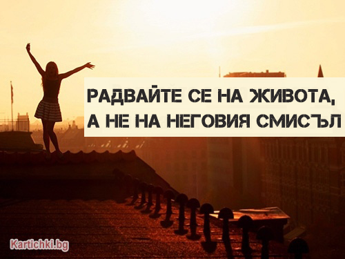 Радвайте се на живота, а не на неговия смисъл