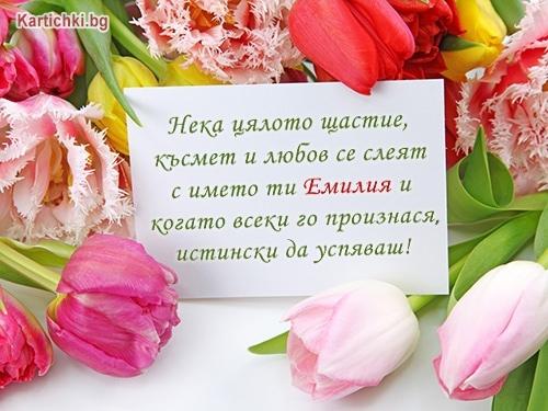 Нека цялото щастие, късмет и любов се слеят с името ти Емилия