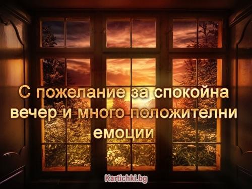 С пожелание за спокойна вечер и много положителни емоции
