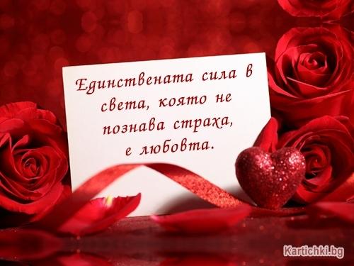 Единствената сила в света, която не познава страха, е любовта