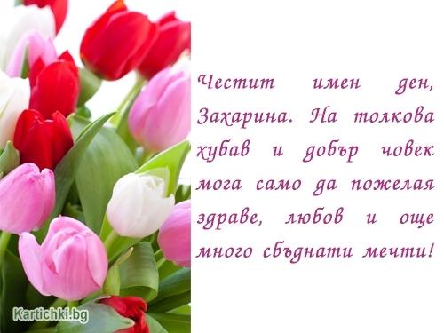 Честит имен ден, Захарина