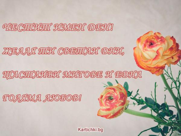 Желая ти Светли Дни, Щастливи Мигове и Любов